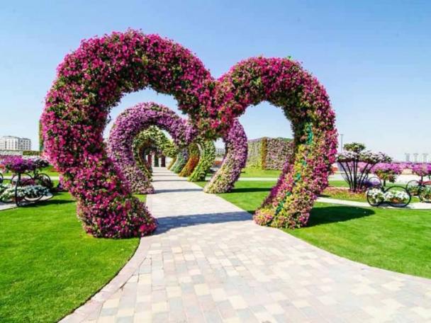 Marvelous-Dubai-Miracle-Garden-2